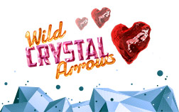 Wild Crystal Arrows